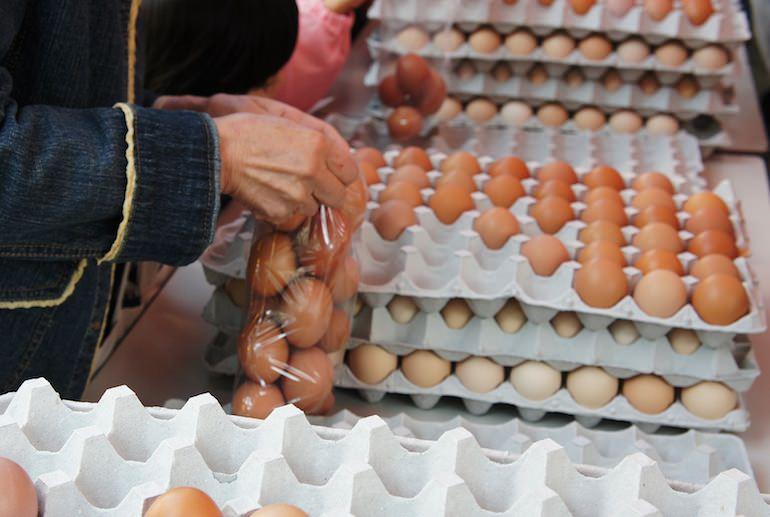 卵の詰め放題